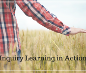 Inquiry Learning in Action